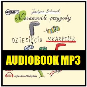 Niesamowite przygody 10 skarpetek audiobook Mp3